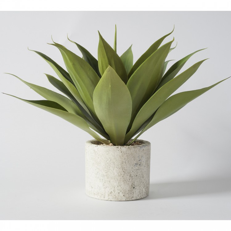 Faux Agave in Stone Effect Tub (2pk)