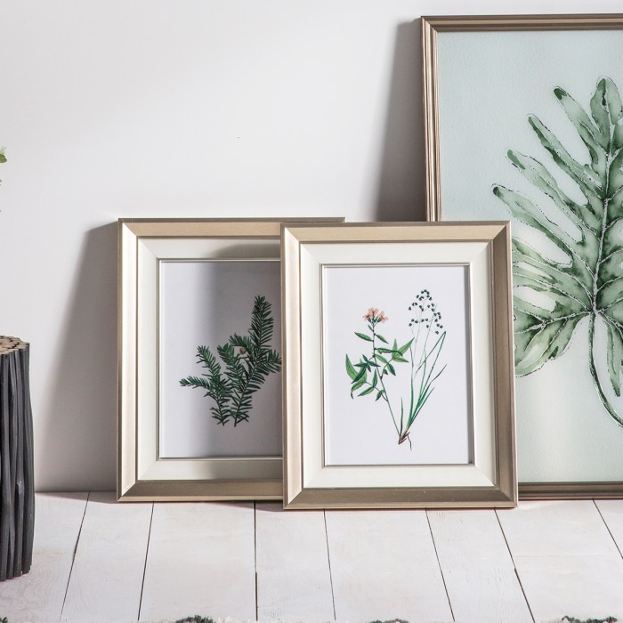 Botanical Spring II Framed Art Set of 2