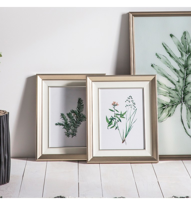 Botanical Spring II Framed Art Set of 2 | Gallery Direct Australia