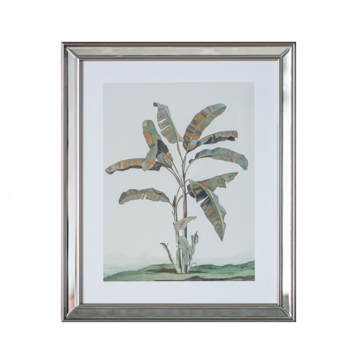 Banana Palm Framed Art I