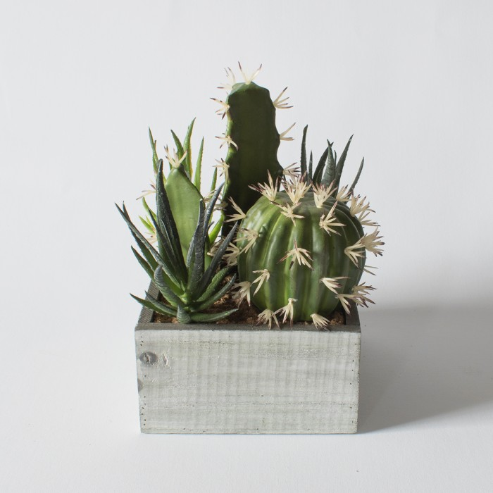 Faux Cactus in Wood Crate