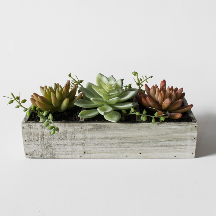Faux Succulent Trio in Wood Crate